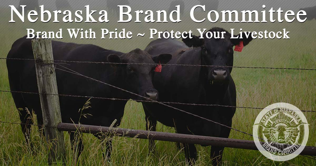 Frequently Asked Questions | Nebraska Brand Committee